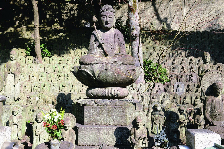 6_大円寺
