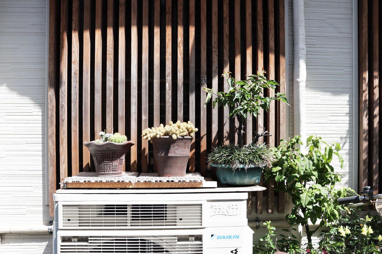 室外機には鉢植えが置かれがち。石井さんによると「片手袋も置かれがち」とのこと。
