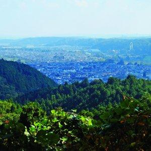 古きよき里山を求め、横沢入と天竺山へ。東京都・あきる野市【東京発日帰り旅】