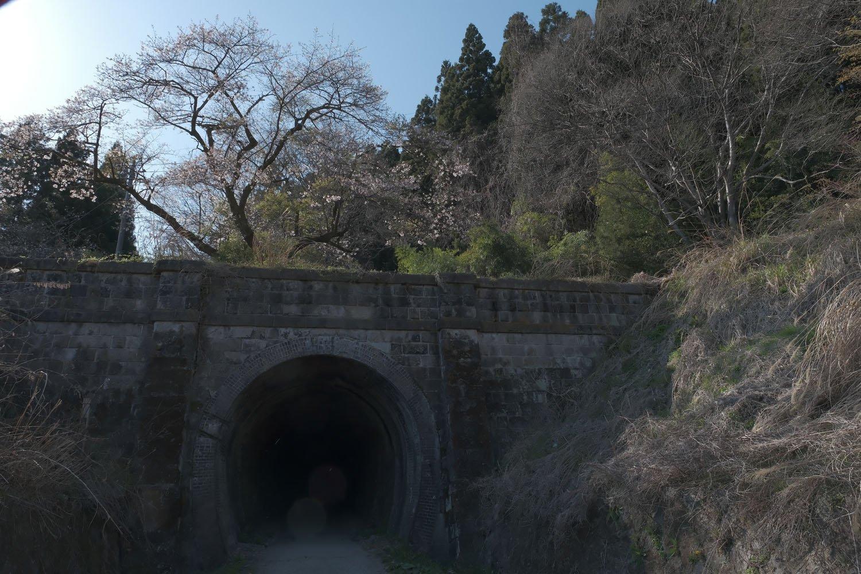 発掘された第一トンネルのポータル。石積みの重厚感に見惚れる。頭上の桜の木も良いアクセントだ。