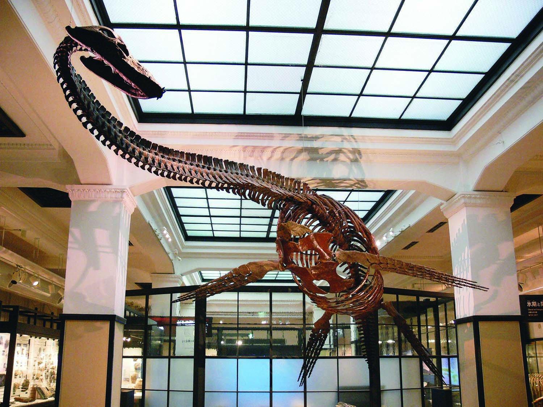 3_国立科学博物館
