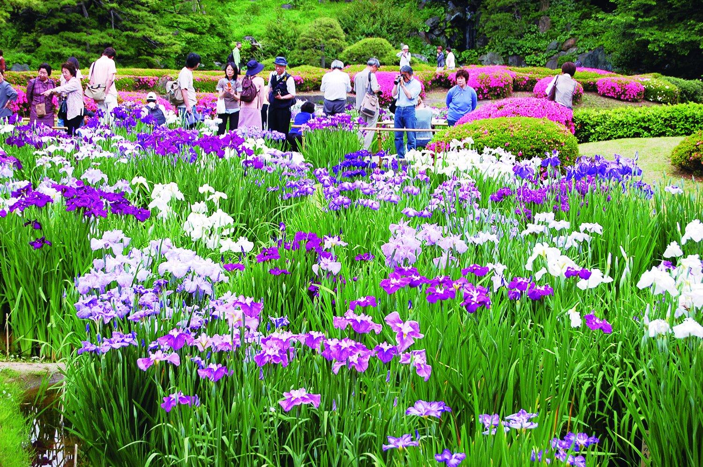 04_皇居東御苑 二の丸庭園 (27)