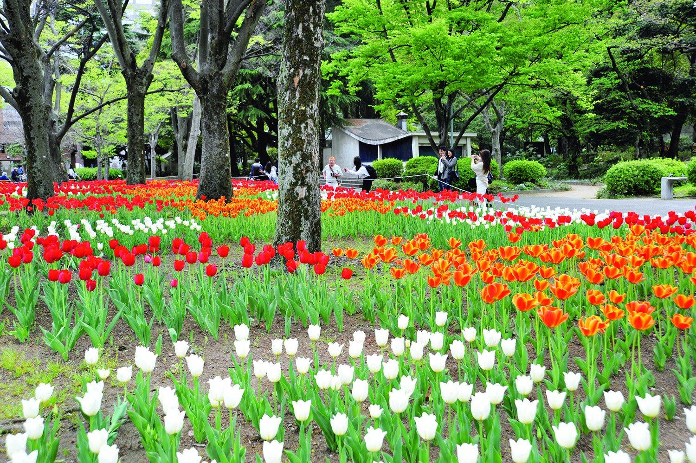 07_銀座・有楽町_日比谷公園