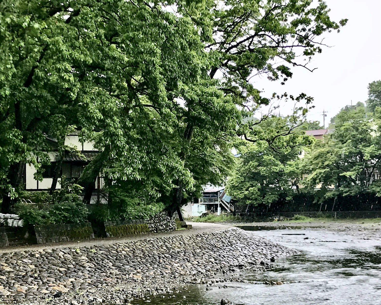 1978年の開店当初から変わらぬその佇まいは、すっかり飯能河原に溶け込んでいる。店名は周囲に茂るクヌギ、いわゆるどんぐりの木が由来だ。