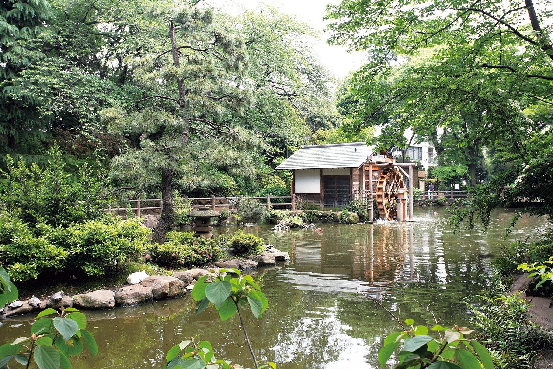 05_松濤鍋島公園