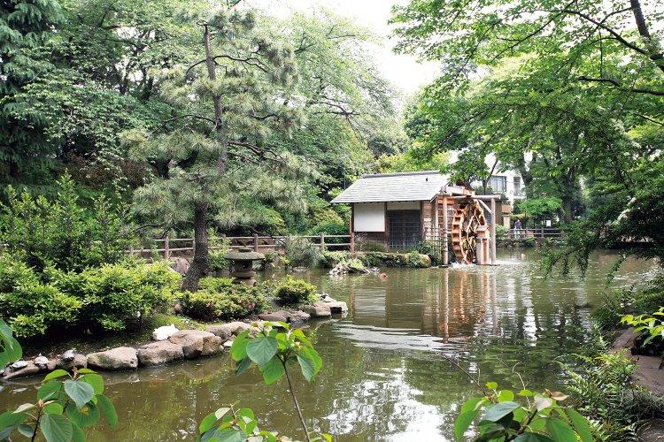 鍋島松濤公園(なべしましょうとうこうえん)