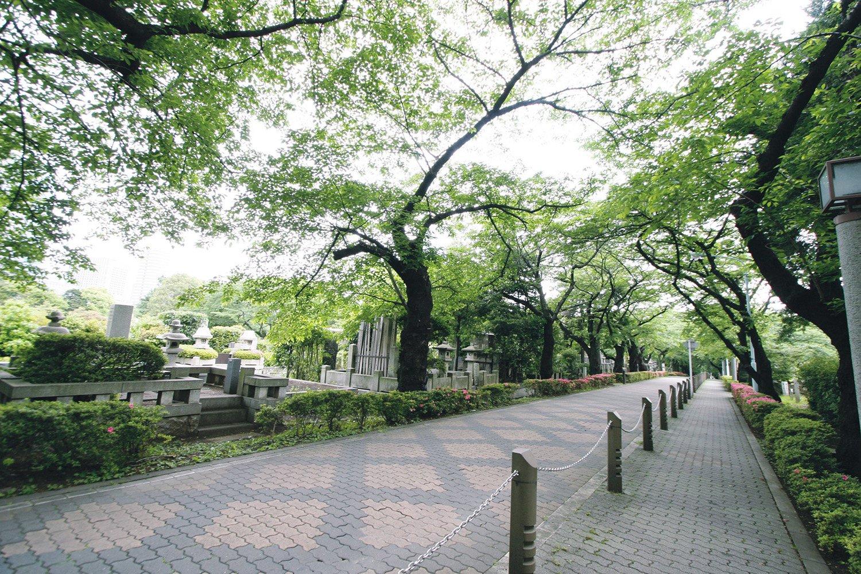 05_青山霊園