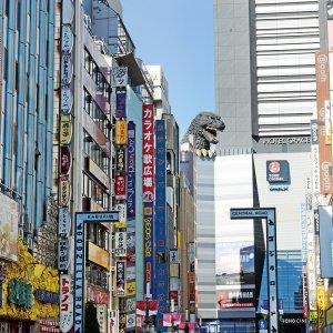 新宿駅からはじめる新宿散歩 〜西のオフィス街、東の歓楽街。街の歴史も楽しめるエリア〜