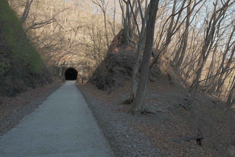 振り返って第6トンネルと切り通しを見る。鉄枕木はさりげなくある。