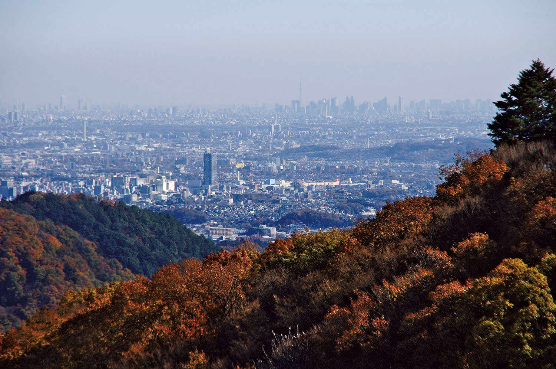 小仏峠からの都心部の眺望。