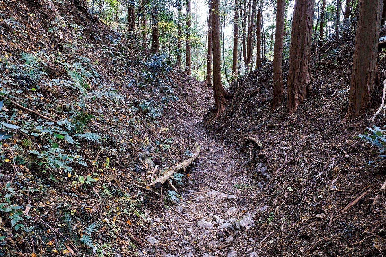 小仏峠からの下りの道。街道だけあって登山道よりは広く、勾配もあまりくつくないように造られたようだ。