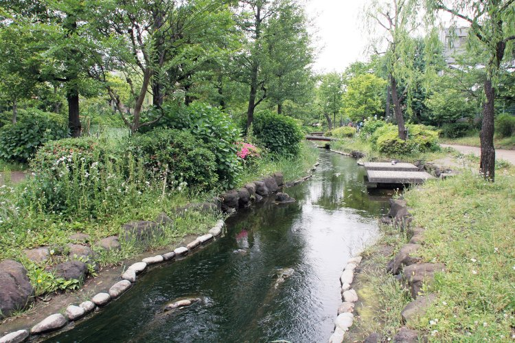 大横川親水公園(おおよこがわしんすいこうえん)