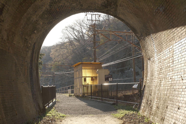 トンネルの出口は眩い緑の木々ではなく、架線柱などの鉄道設備であった。