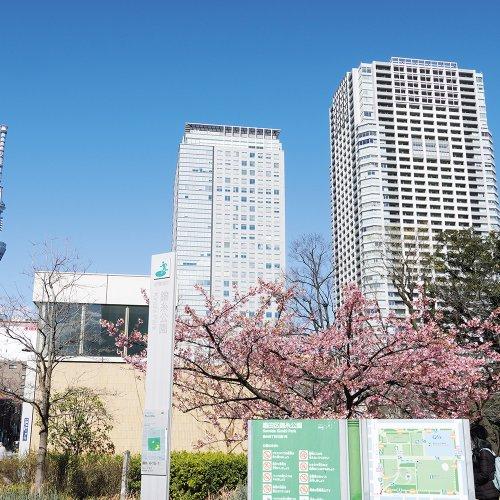 錦糸町駅からはじめる錦糸町・亀戸散歩 〜浮世絵にも描かれた梅の名所。今は音楽と餃子の街〜