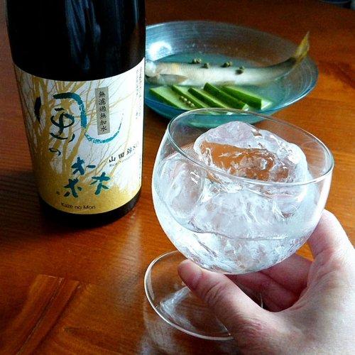 鮎とキュウリの酒煮(冷製)に「風の森」〜おいしい日本酒は飲むだけではもったいない最高の調味料〜