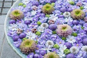 行田八幡神社の花手水