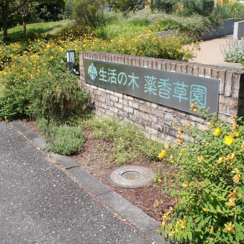 飯能の老舗ハーブ園が営む『生活の木 メディカルハーブガーデン 薬香草園ベーカリー』は、 飽くなきハーブへのこだわりでイチ...