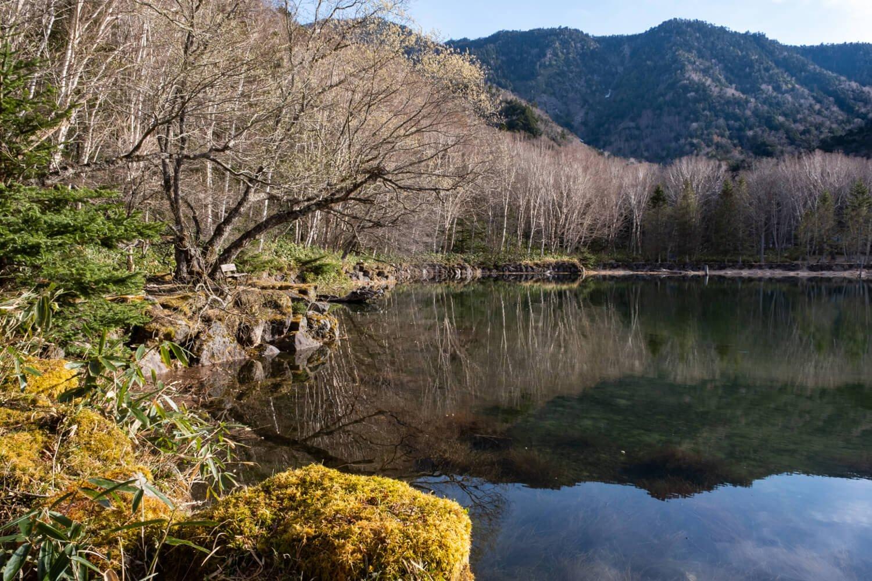 静寂が似合う南北約1.2㎞、東西約500mの広さを有する丸沼。