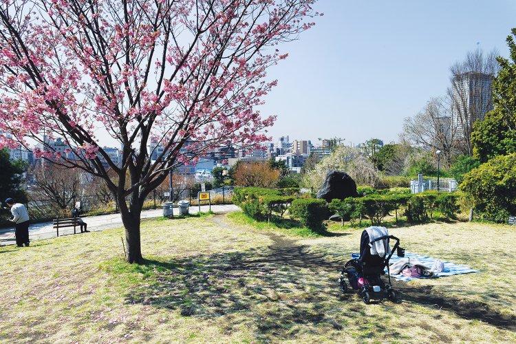 西郷山公園(さいごうやまこうえん)