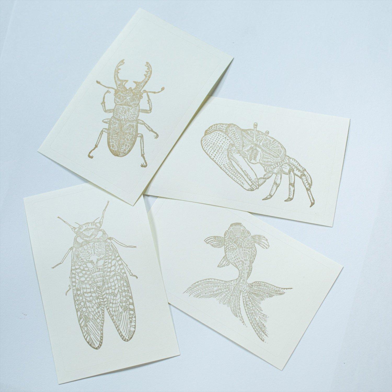 昆虫や水中生物をリアルに描くトッパンシール各種3枚入り200円。
