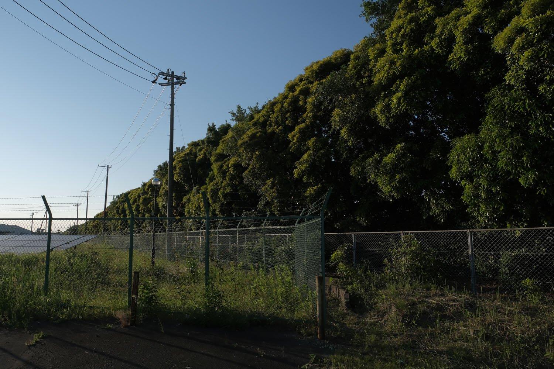 南東―北西方向の滑走路跡はブレーキテストコースとなっており、生垣のようにずらっと植樹されている。
