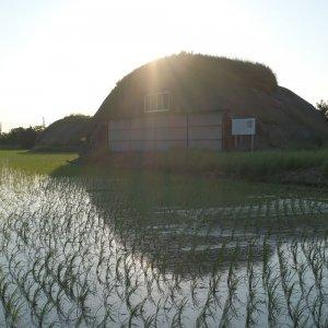 十字状滑走路跡の先の田んぼに残された2基の掩体壕。旧海軍香取航空基地 その2