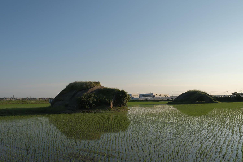 背後から見る。掩体壕の上部には草が生え、脇にも低木が生えている。