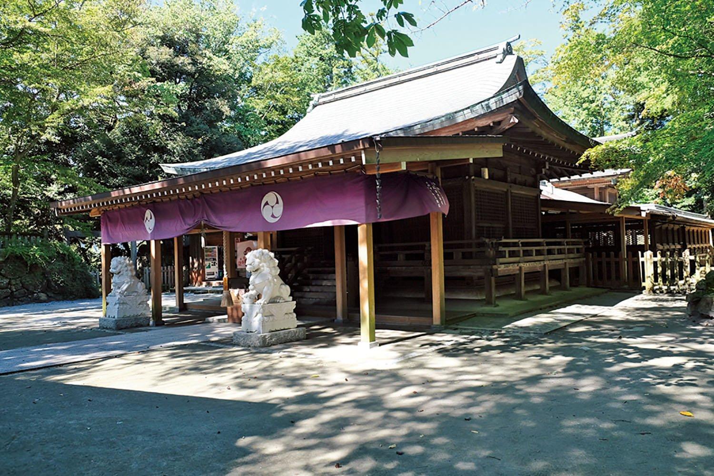 唐沢山城の本丸跡に建つ唐澤山神社。