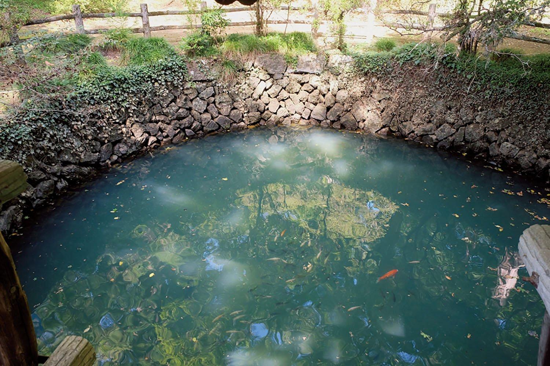城内にある大炊(おおい)の井という池。築城の際に湧き出たという池で、水深9m、直径8m。水が涸れたことはないそうだ。