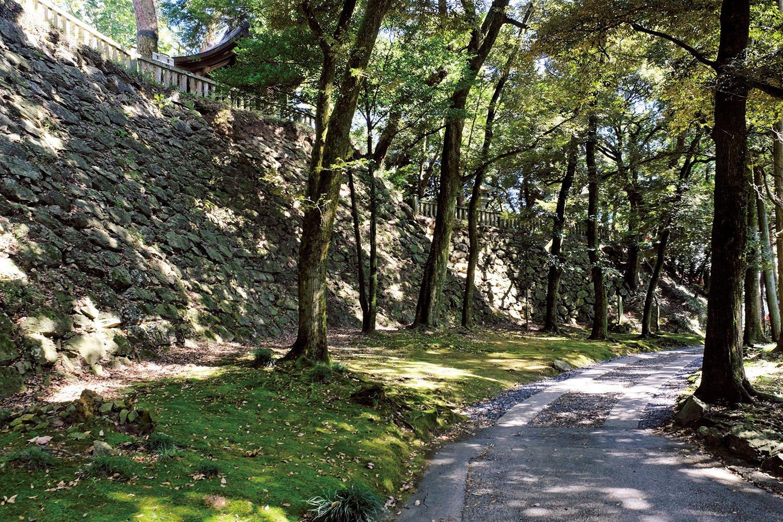 本丸を囲む見事な高石垣。高さは8mほど。これほどの石垣は関東では他に見当たらない。