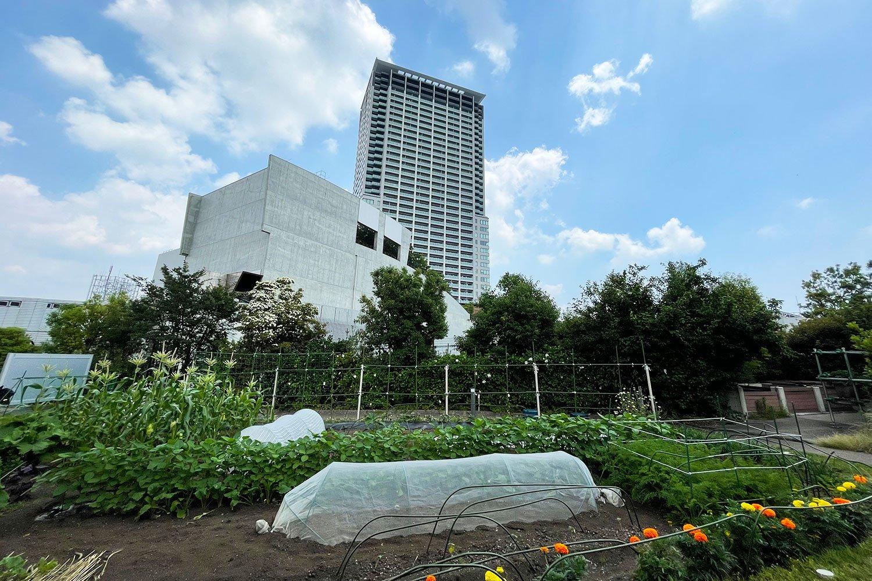 庭園を見下ろす「クロスタワーレジデンス」。「高層部の垂直的なシルエットが印象的で、気品や崇高さを感じさせます」と石川さん。