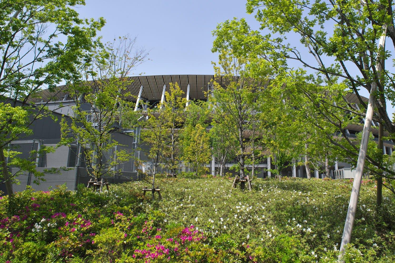 木材を多用し外観にも植栽を配した建築。敷地内の樹木も美しく育った。