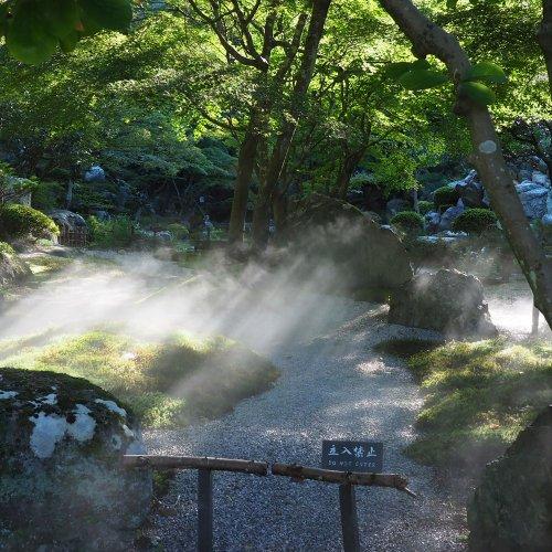【東京×公園】ここでのんびりするのが好き…そんな公園、教えてください