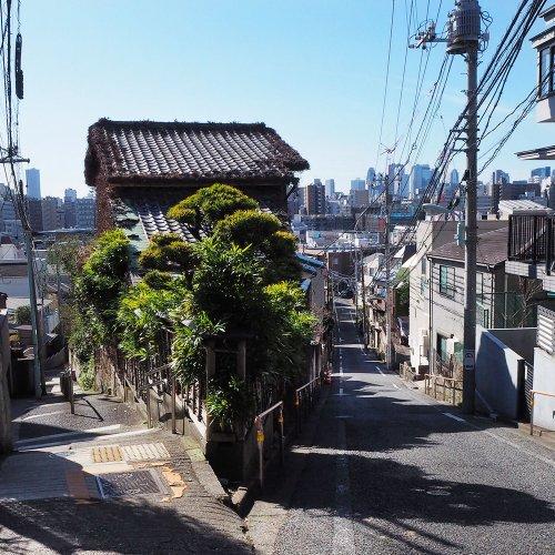 【東京×坂・階段】凸凹地形がつくる美しき風景を記録せよ