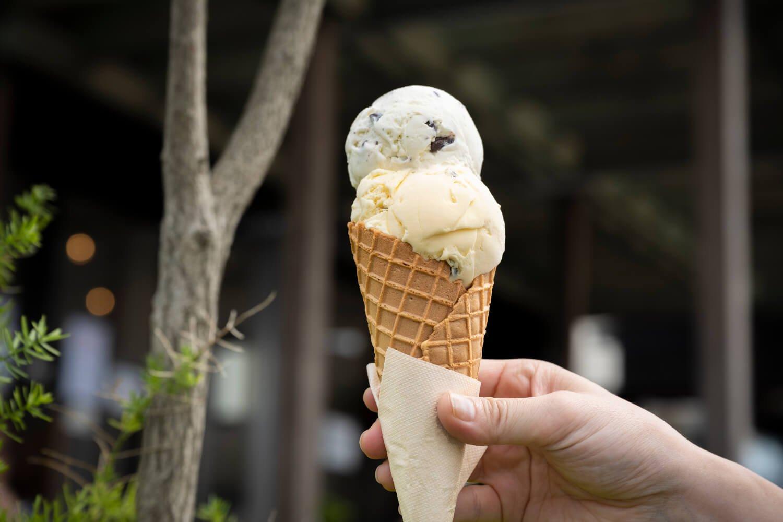 Hilo Homemade Ice Cream2