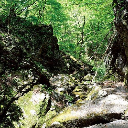 御岳山の近くの岩石園と滝巡りで、東京のゴルジュを体感。【東京発日帰り山さんぽ】