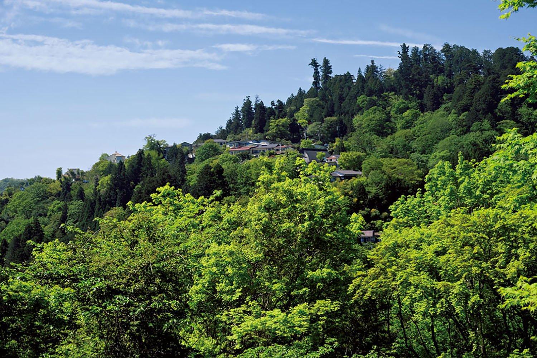 御岳山山頂周辺にある山上集落。宿坊などがある。