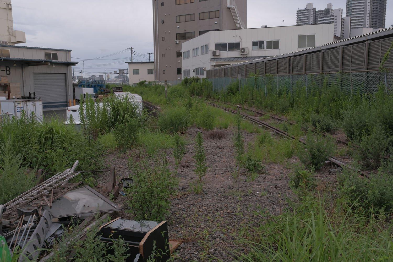 左のゴミが溜まっているところでもう一方の線路は途切れている。その先は路盤が無くなっている。削られたのか、もともと無かったか判別できなかった。