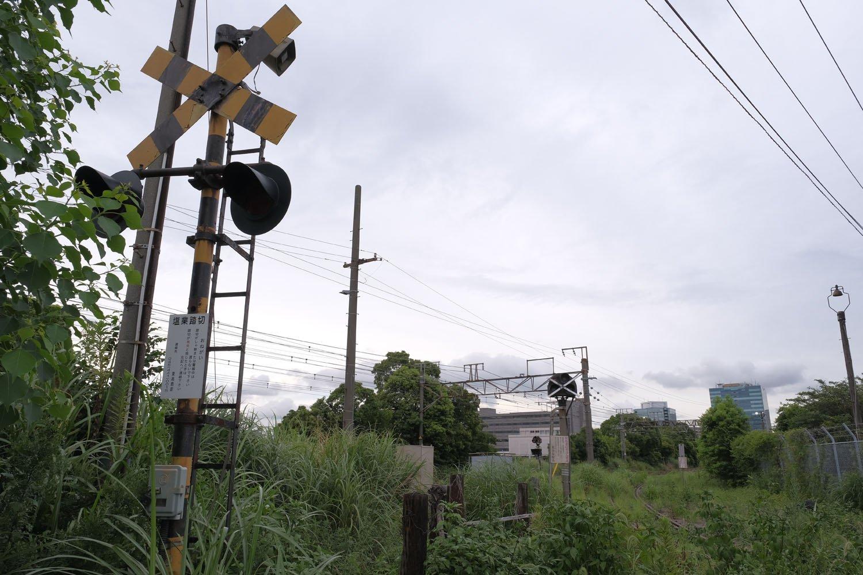 警報機は草木に埋れつつある。ここの警報機が鳴ることはもうない。