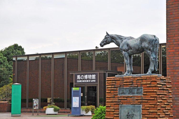 根岸競馬記念公苑 馬の博物館(ねぎしけいばきねんこうえん うまのはくぶつかん)