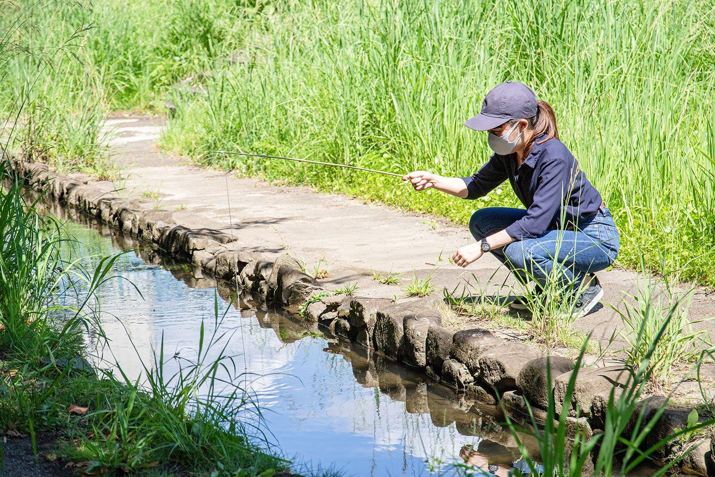 【大人の夏休み】大まじめにアメリカザリガニを釣る ~これは遊びではない、学びだ!~