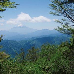 ほっこり温泉山、三頭山から槇寄山へ。【東京発日帰り山さんぽ】
