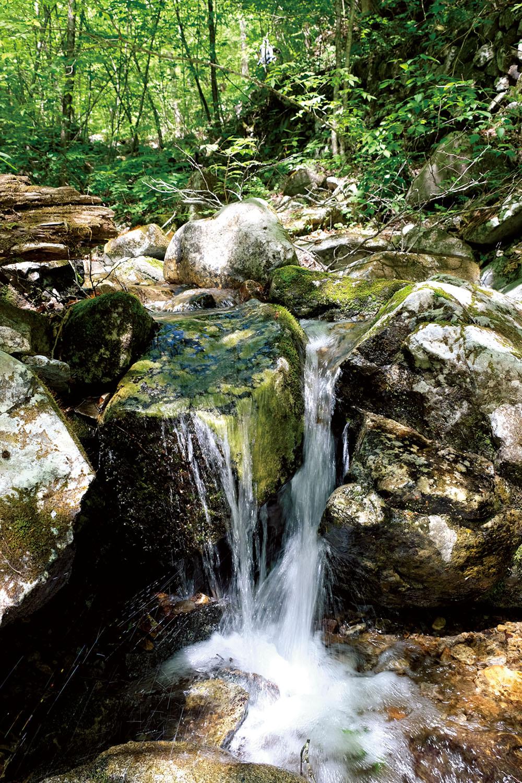 三頭大滝の上流部の三頭沢の流れ。南秋川に注ぐ。