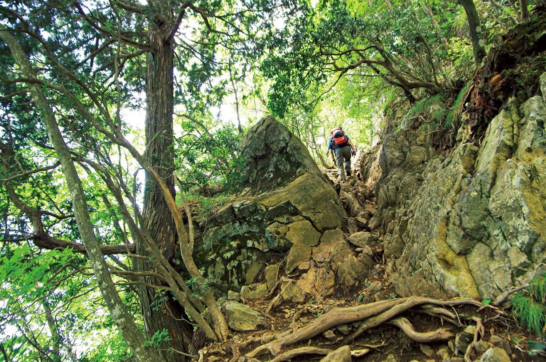 大嶽神社から大岳山山頂までは岩場が何箇所かある。