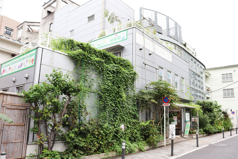『渋谷区ふれあい植物センター』 10:00~18:00(入場は17:30まで)、月休(祝日または振替休日の場合は翌平日)。東京都渋谷区東2-25-37。☎03-5468-1384。