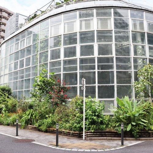 """日本一小さな植物園『渋谷区ふれあい植物センター』は地域のハブの役割も果たす""""渋谷の庭""""だった!"""