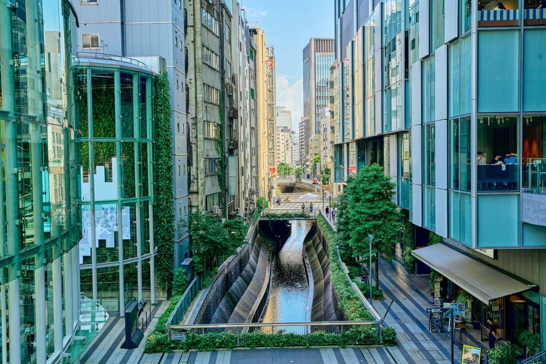 壁泉から清流復活水が注ぐ渋谷川。新並木橋の南までは川に沿って遊歩道が延びる。