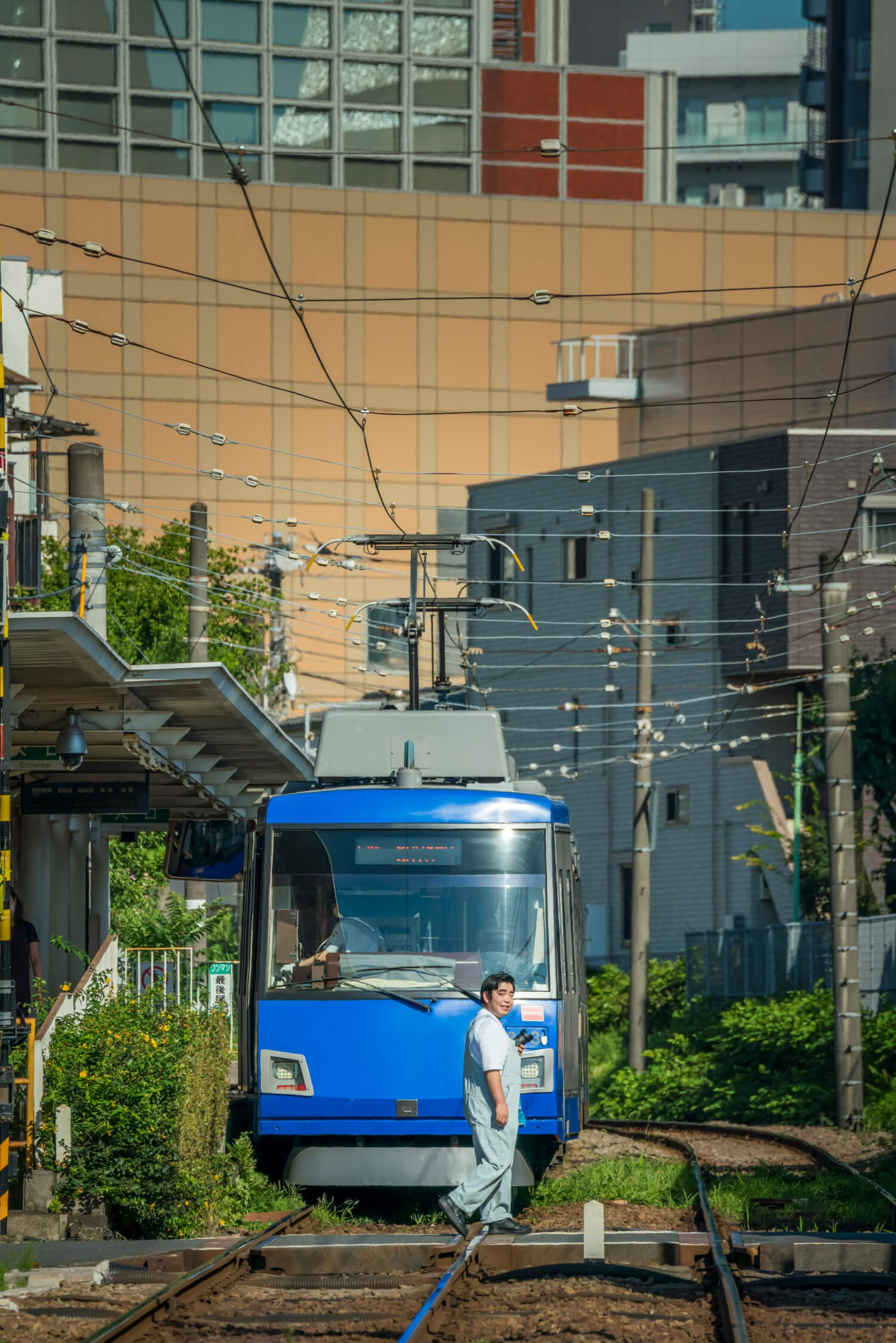 三軒茶屋駅の踏切を渡る徳ちゃん。一番好きな青の車両と。「日本の孫」の夏休み風ショット。