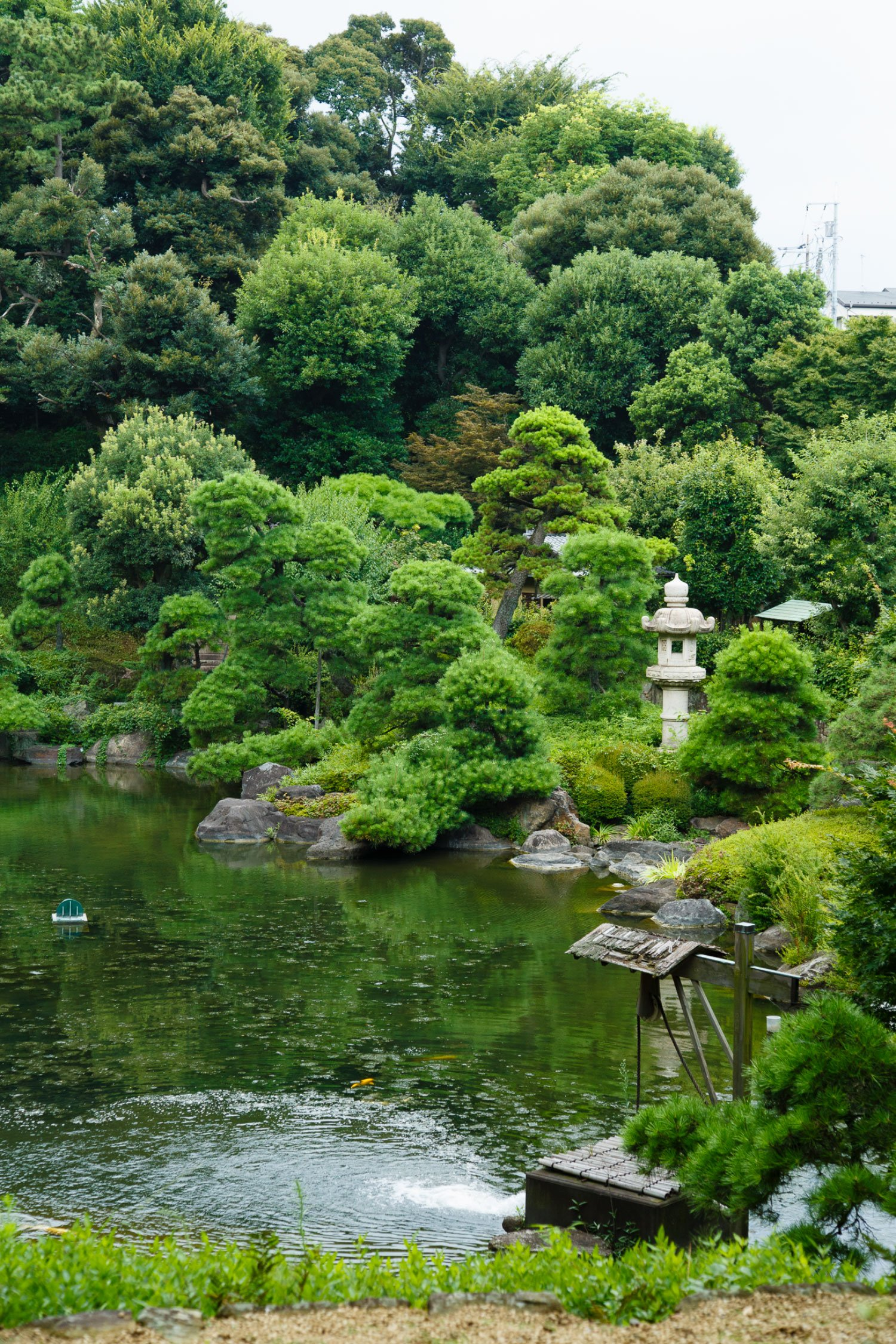 通常非公開の奥庭・松濤園。