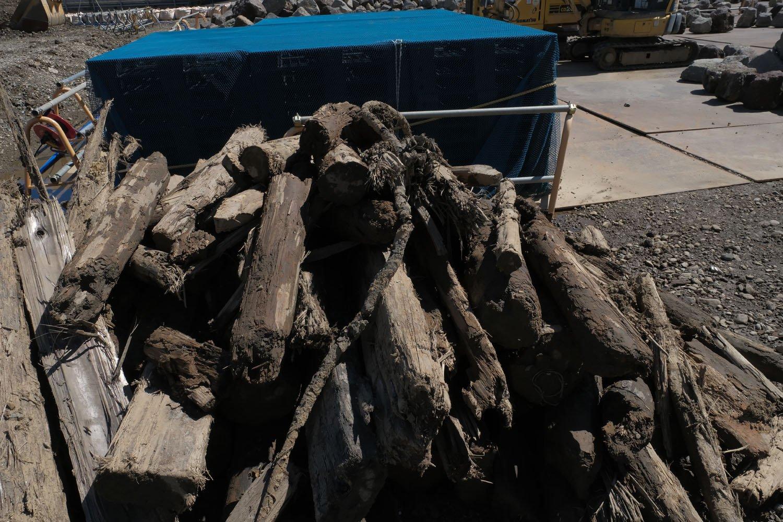 埋没していた杭が引き抜かれて石垣の石と共に一時保管されている。約150年間海と地中に没していた杭だ。